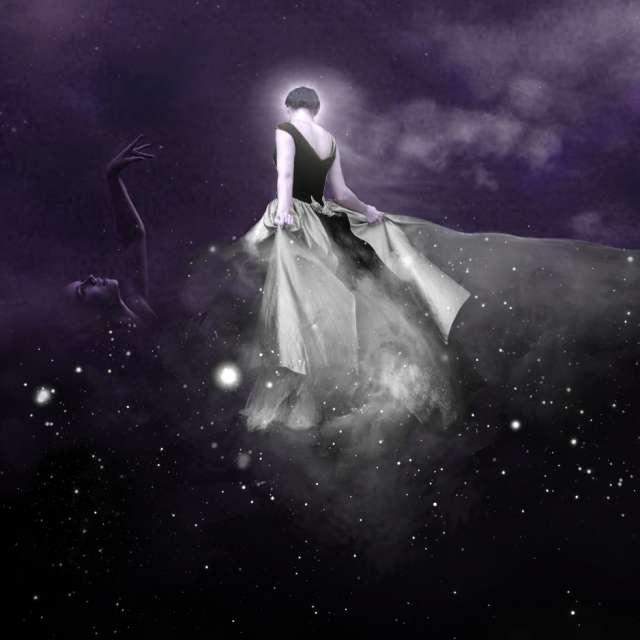 Reine de la nuit (détail)