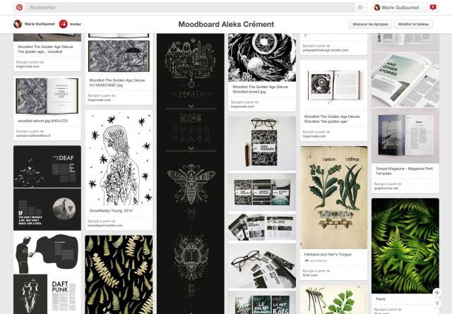 Aperçu demon moodboard Pinterest pour ce projet