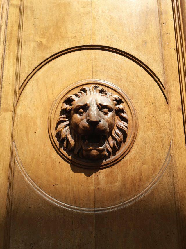 Lion deLyon